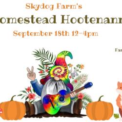 Homestead Hootenanny (2)