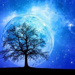 blue moon pic2